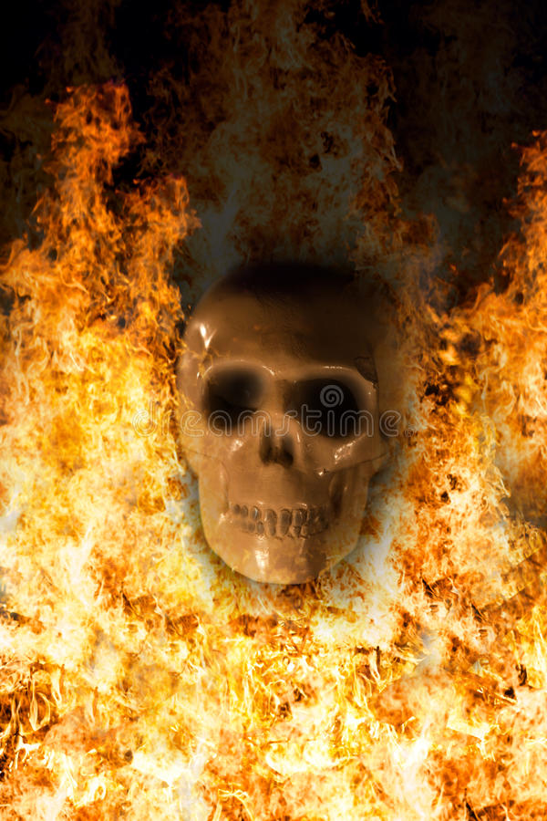 Crâne, fond de Halloween photos stock