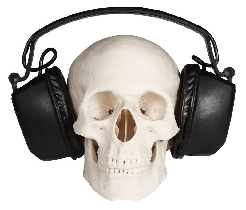 Crâne humain avec des écouteurs de musique sur le blanc images stock