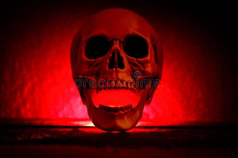 Crâne humain avec la lumière rouge sur le fond noir foncé, décorations de Halloween photos libres de droits