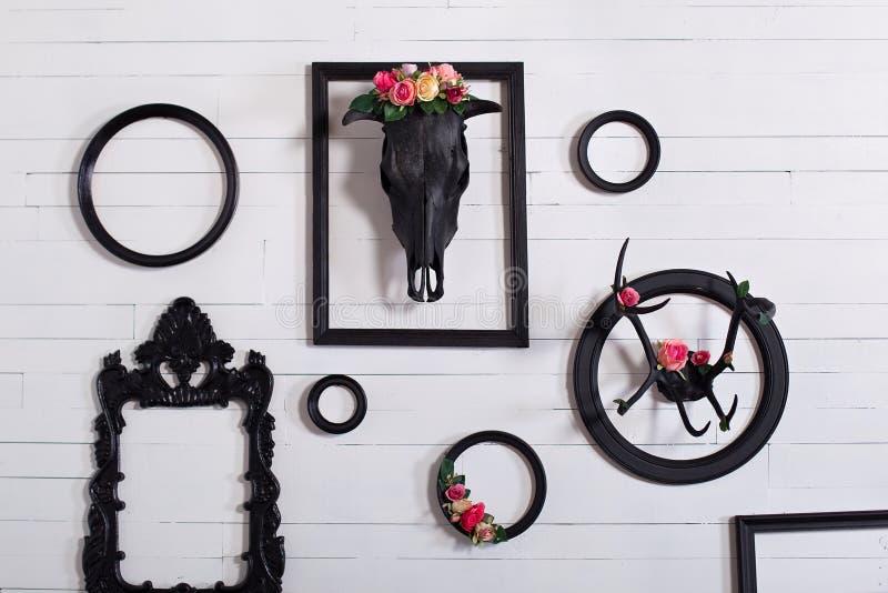 Crâne noir d'un cerf commun et des klaxons sur un mur blanc en bois avec les cadres vides pour des peintures Le concept de décore image libre de droits