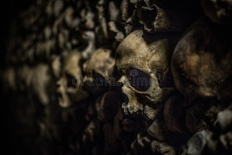 Crânes dans les catacombes de Paris image libre de droits