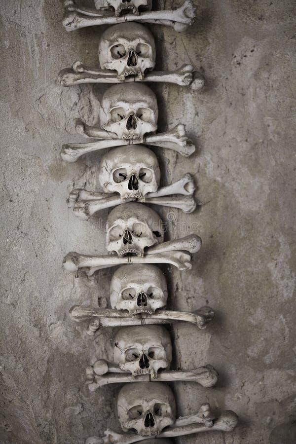 Crânes humains avec des os image libre de droits