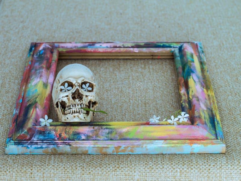Crânes minuscules avec le cadre en bois et la fleur colorés photographie stock libre de droits