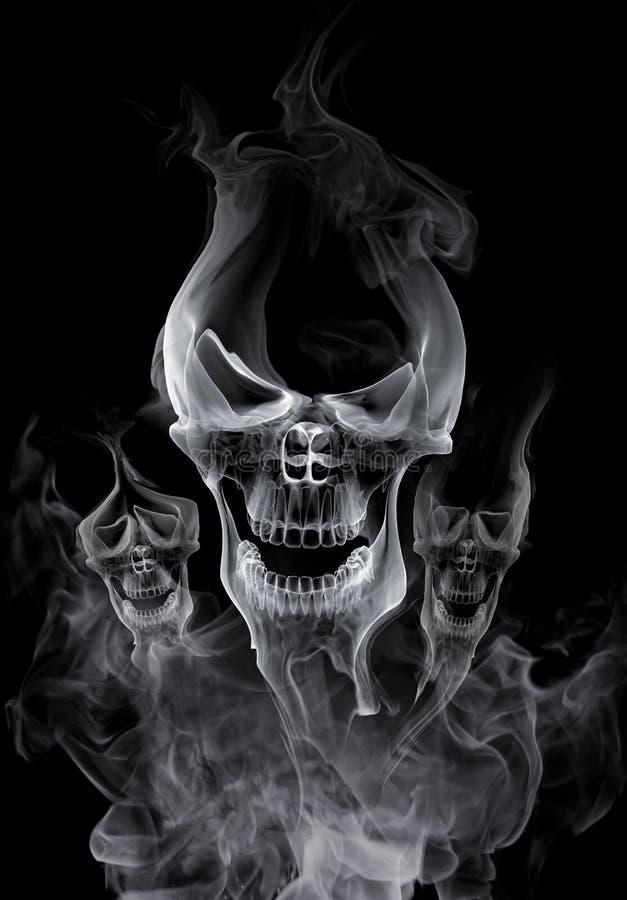Crânio ilustração do vetor
