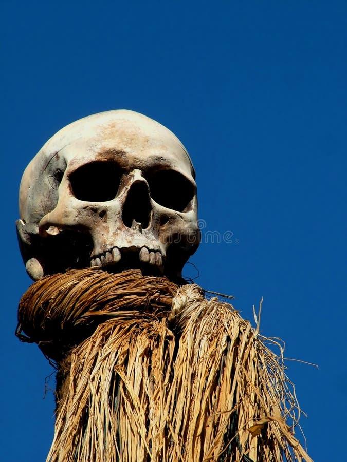 Crânio assustador imagens de stock royalty free