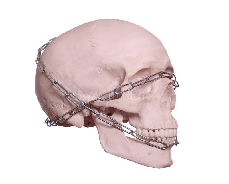 Crânio capturado com corrente fotos de stock royalty free