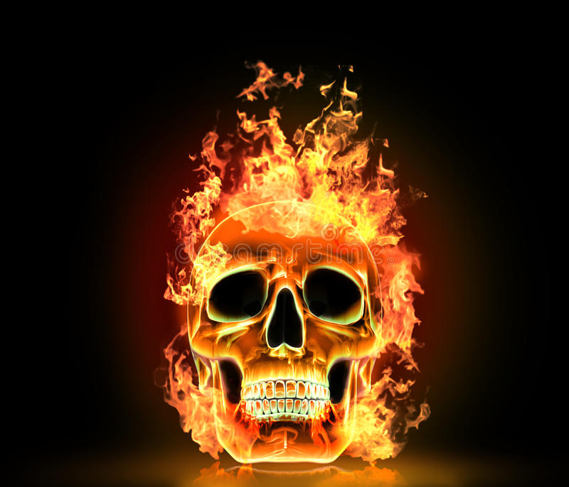 Crânio com fogo ilustração royalty free