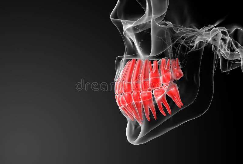 Crânio com os dentes vermelhos visíveis ilustração do vetor