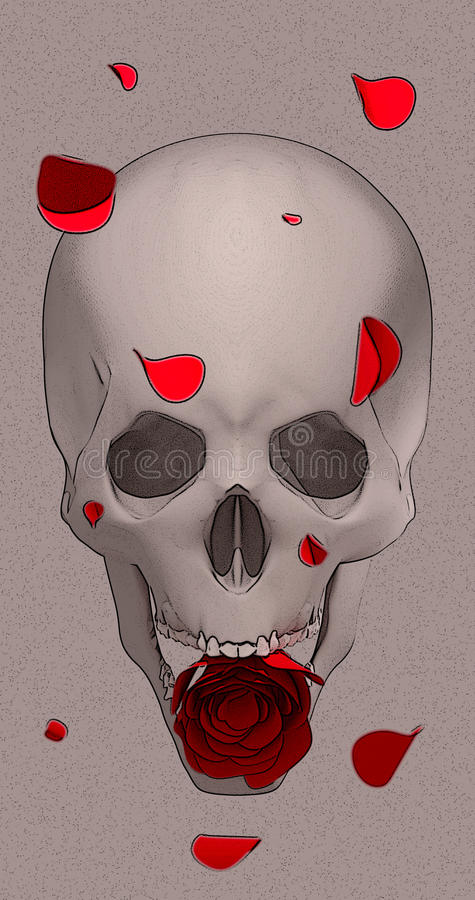 Crânio com uma rosa vermelha fotos de stock