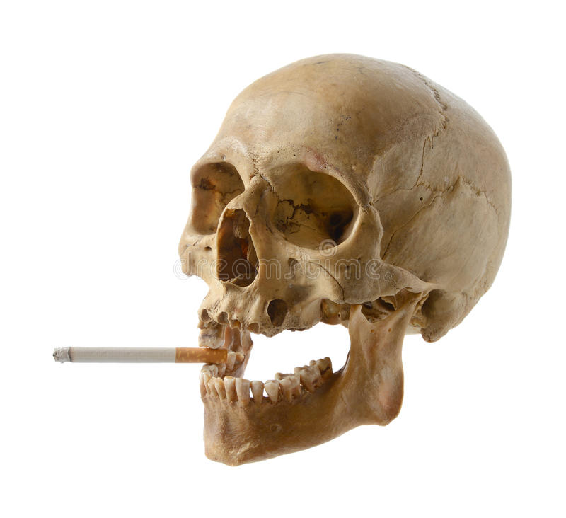 Crânio da pessoa com um cigarro. fotografia de stock royalty free