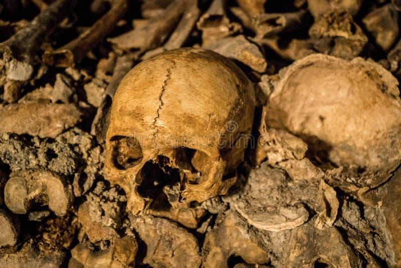 Crânio das catacumbas de Paris imagem de stock