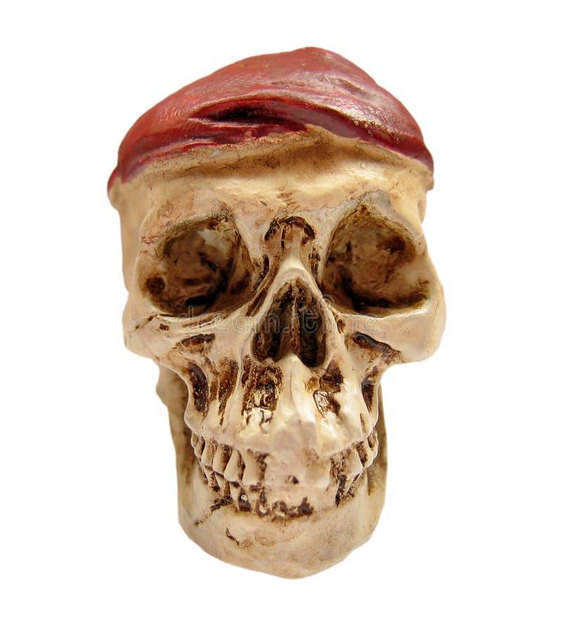 Crânio desgastando do chapéu imagens de stock