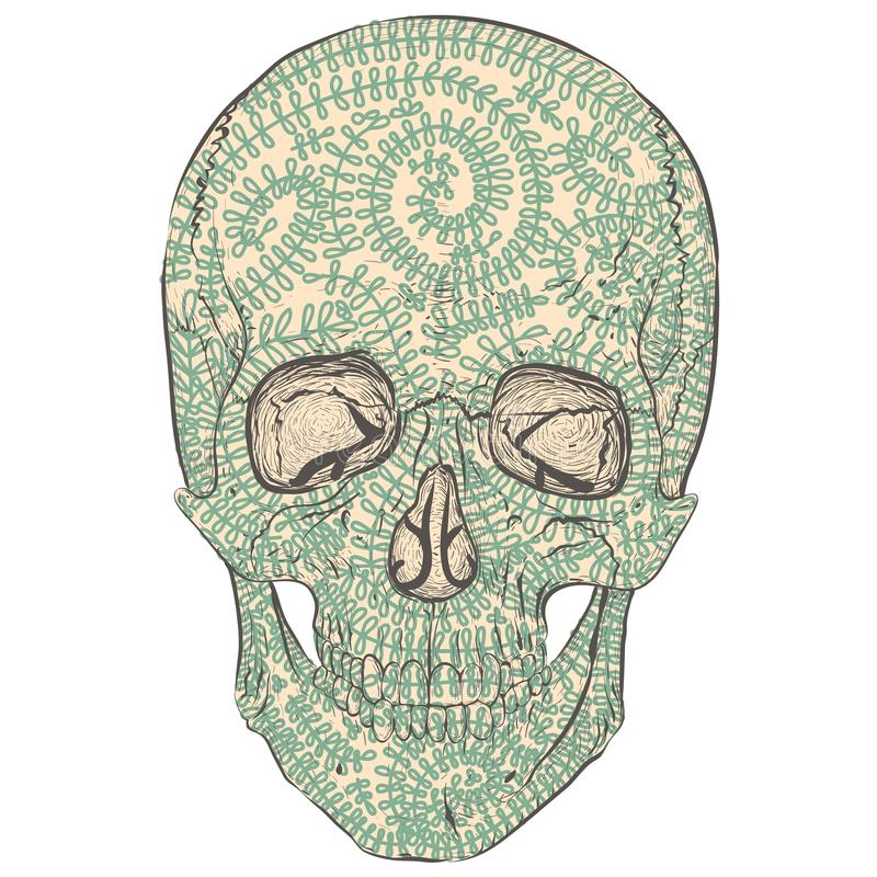 Crânio do Tracery ilustração stock