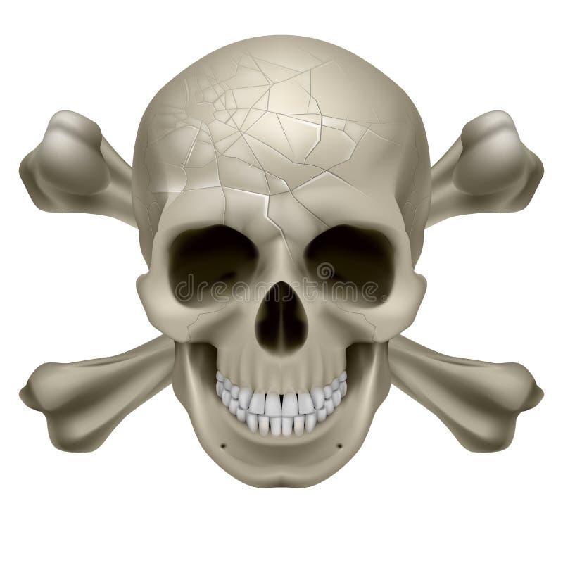 Crânio e Crosbones ilustração stock