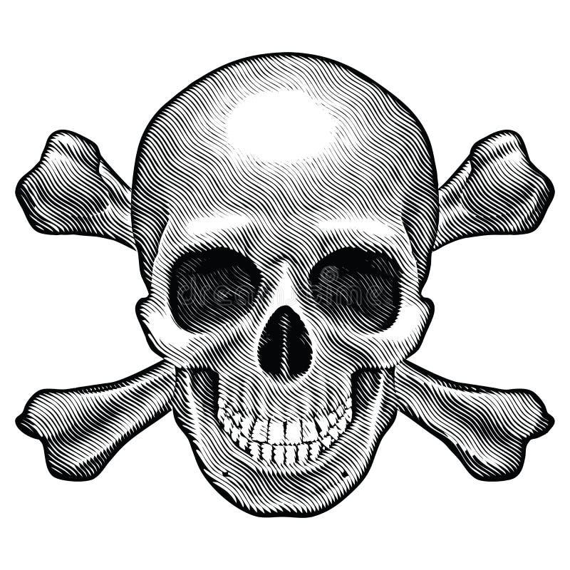 Crânio e figura dos crossbones ilustração do vetor