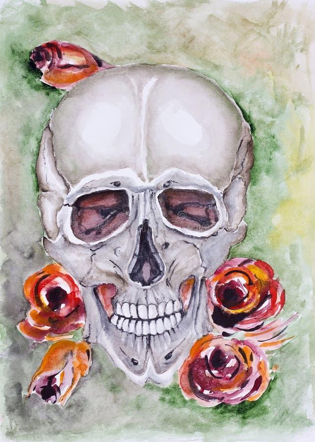 Crânio e rosas ilustração do vetor