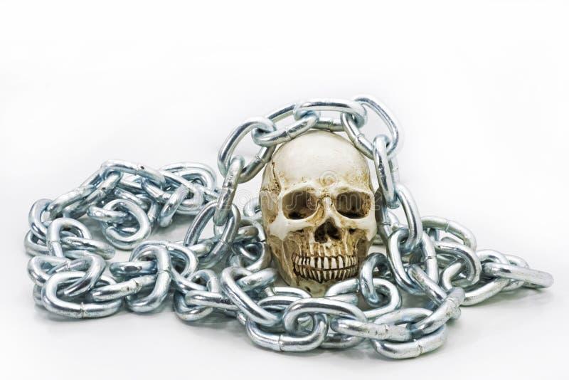 Crânio humano com corrente do ferro imagem de stock