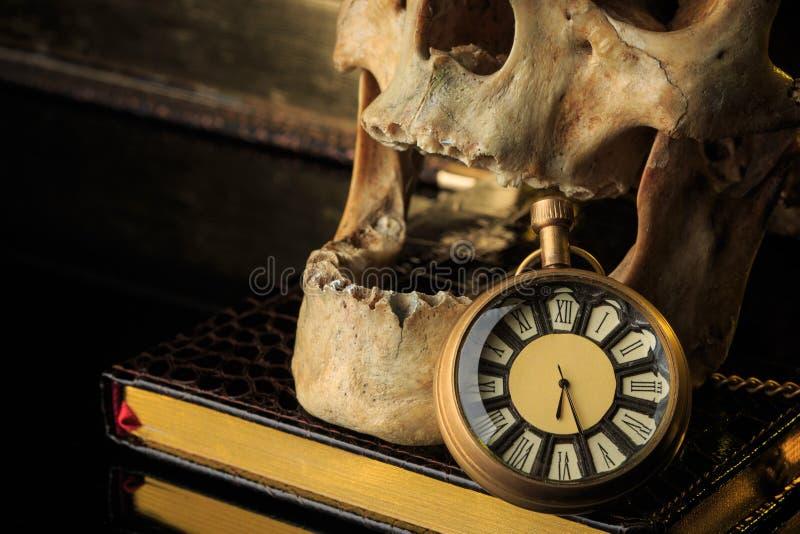 Crânio humano em um livro ao lado do pulso de disparo Conceito imagens de stock