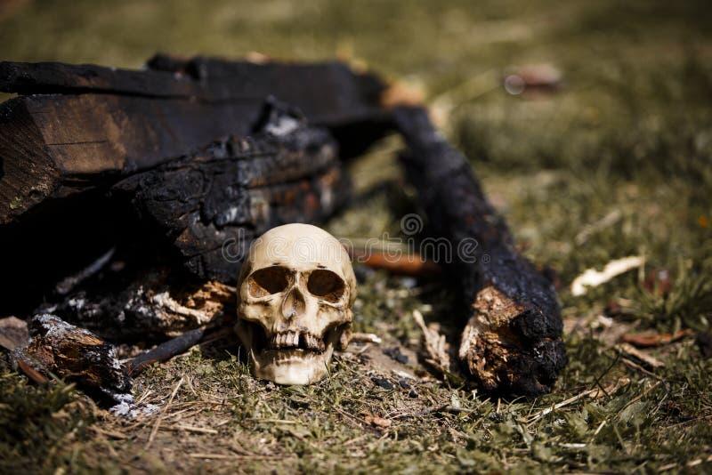 Crânio humano entre os carvões nas cinzas do fogo fotos de stock royalty free