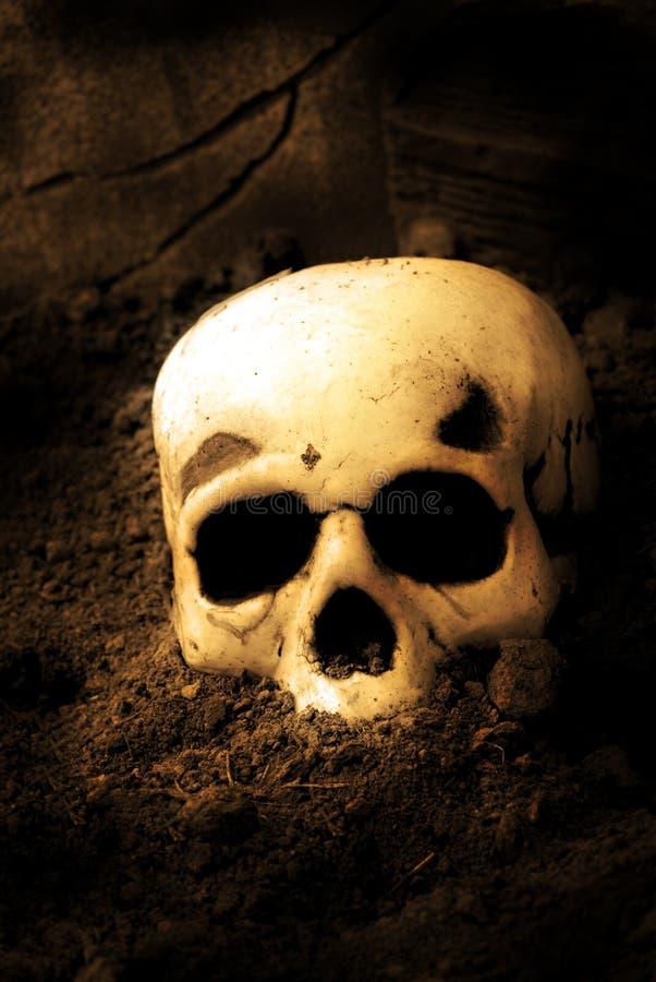 Crânio humano Halloween fotografia de stock royalty free