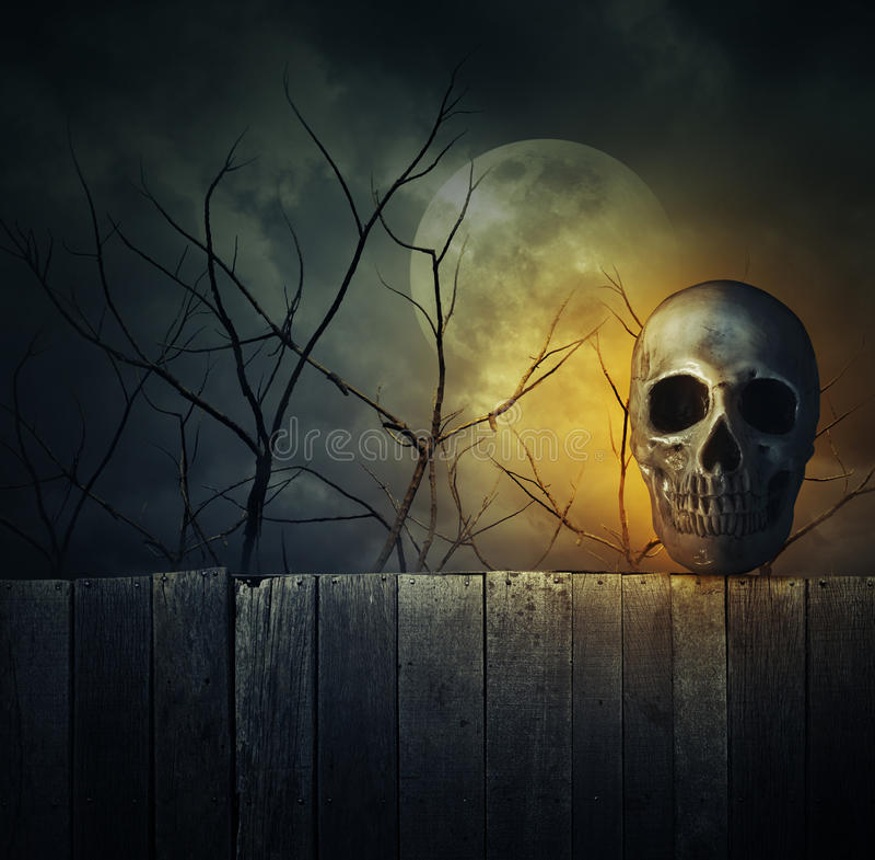 Crânio humano na parede de madeira velha sobre a árvore inoperante, a lua e o céu nebuloso imagem de stock