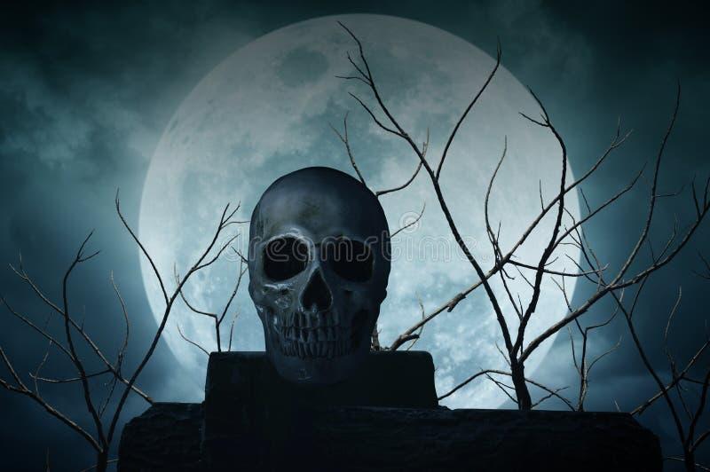 Crânio humano na rocha sobre a árvore e a lua inoperantes imagem de stock royalty free