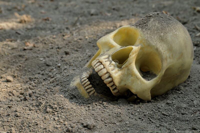Crânio humano na sujeira foto de stock