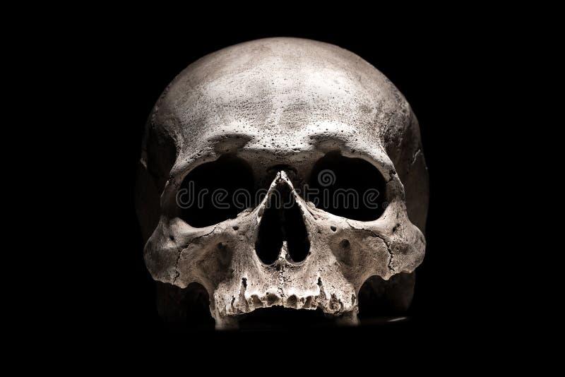 Crânio humano no fim preto do fundo acima fotografia de stock royalty free