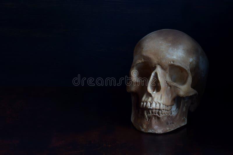 Crânio humano no fundo escuro Cabeça de esqueleto fotos de stock royalty free