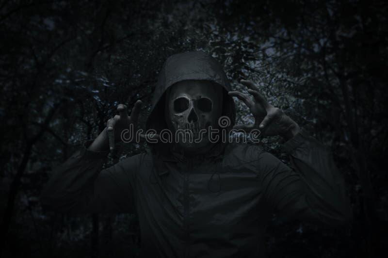 Crânio humano no revestimento sobre a árvore assustador e floresta na noite fotografia de stock