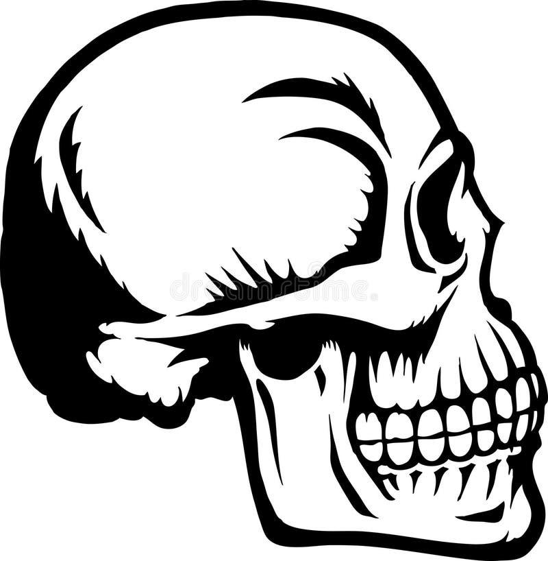 Crânio lateral ilustração do vetor