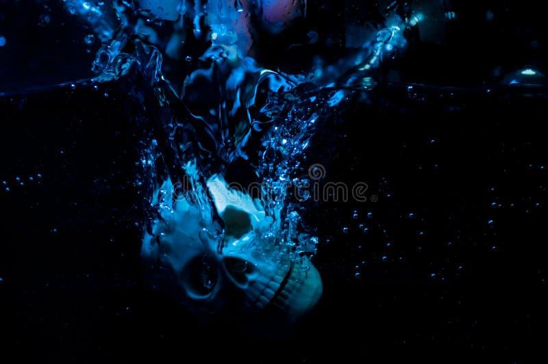 Crânio na água fotografia de stock royalty free