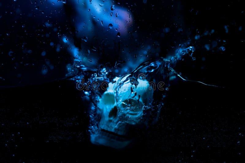 Crânio na água foto de stock royalty free