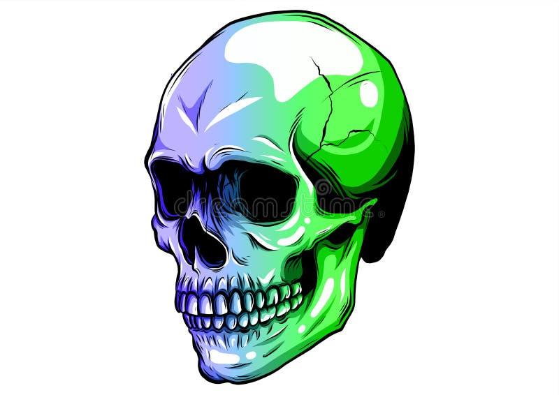 Crânio no projeto da ilustração do vetor da pintura da cor ilustração royalty free