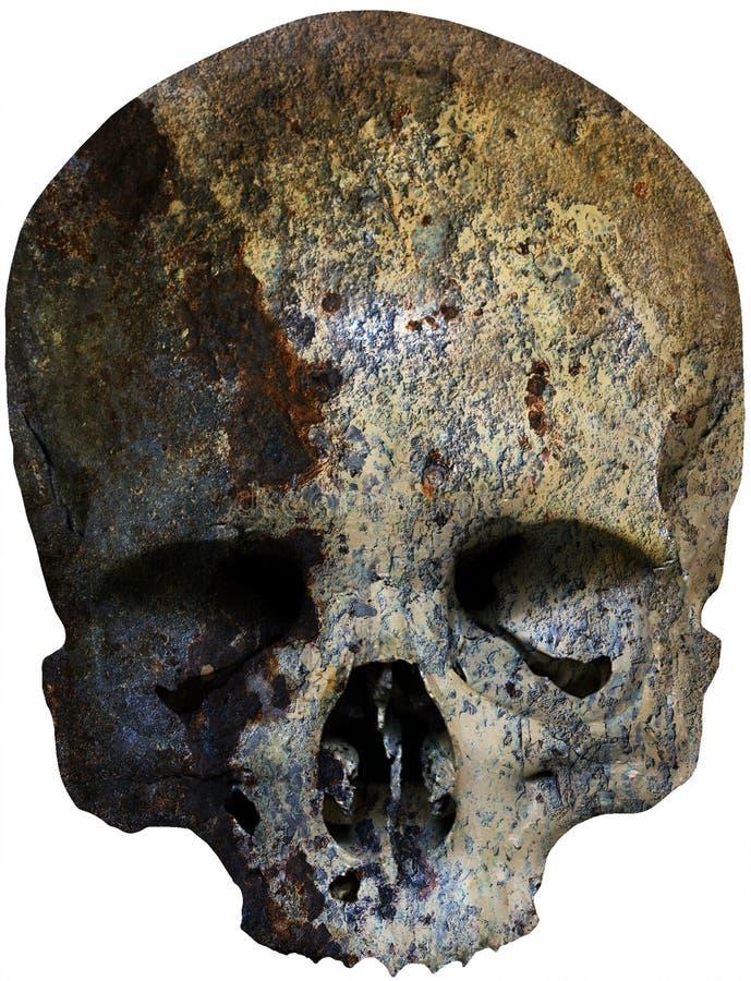 Crânio resistido oxidado ilustração royalty free
