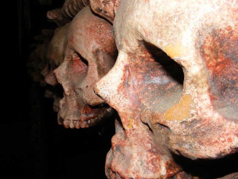 Crânios assustadores escuros no fundo escuro imagem de stock royalty free