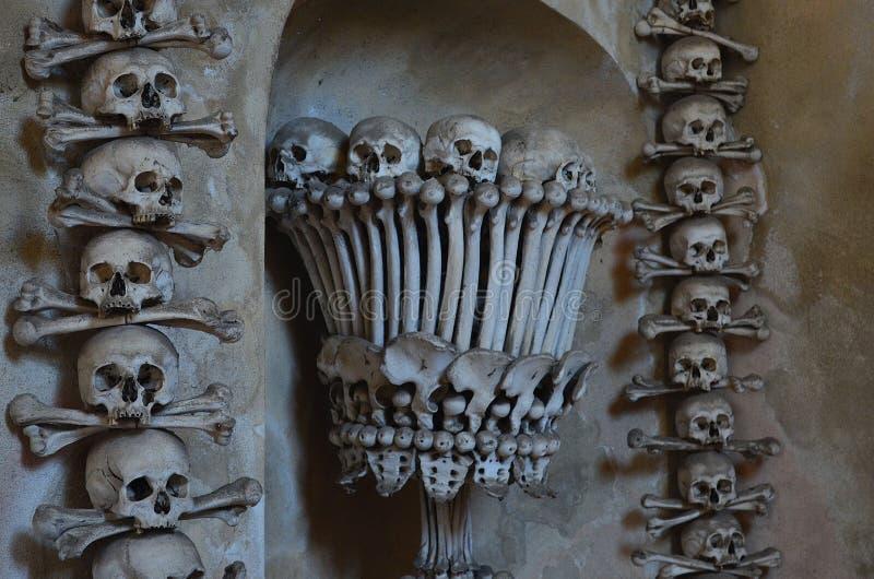 Crânios e ossos fotos de stock