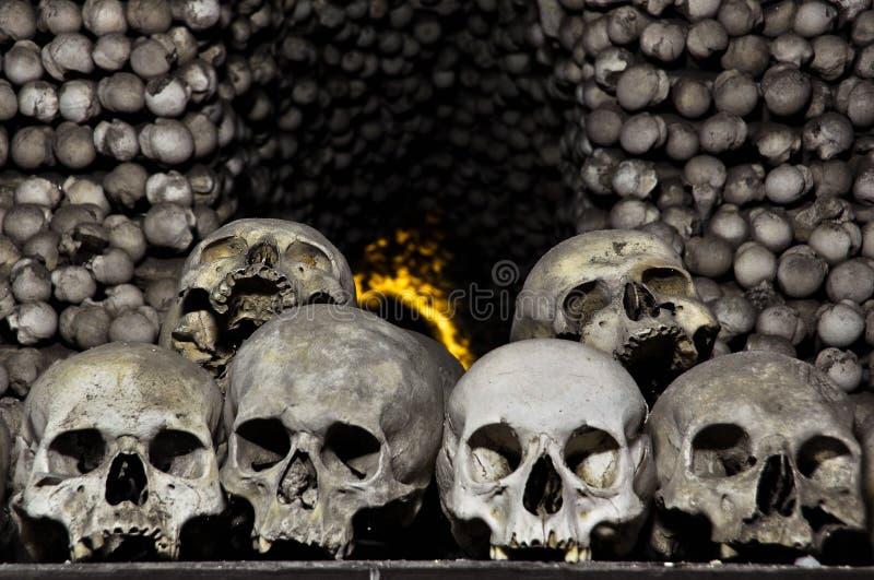 Crânios e ossos humanos imagens de stock royalty free