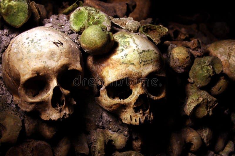 Download Crânios Em Um Catacomb Francês Imagem de Stock - Imagem de inferno, morte: 10058071