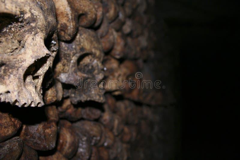 Crânios no Catecombs imagem de stock
