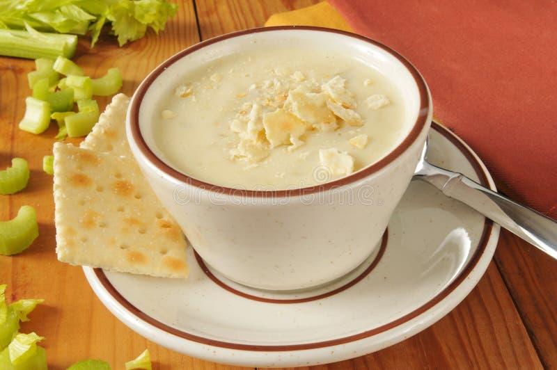 Crème de soupe à céleri photo libre de droits
