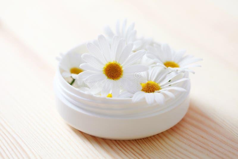 Crème de visage de Chamomille photo stock