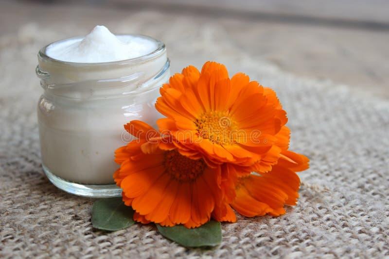 Crème de visage et fleur de calendula Cosmétiques photo libre de droits