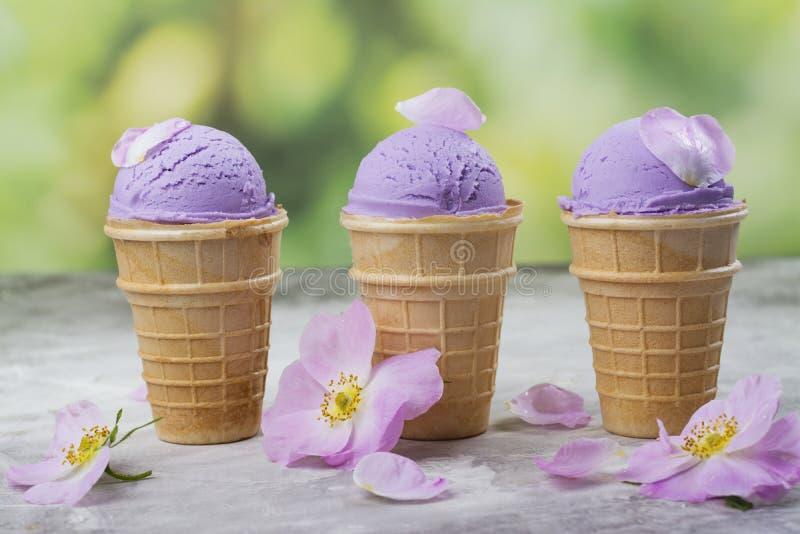 Crème glacée pourpre faite maison d'ube photographie stock libre de droits