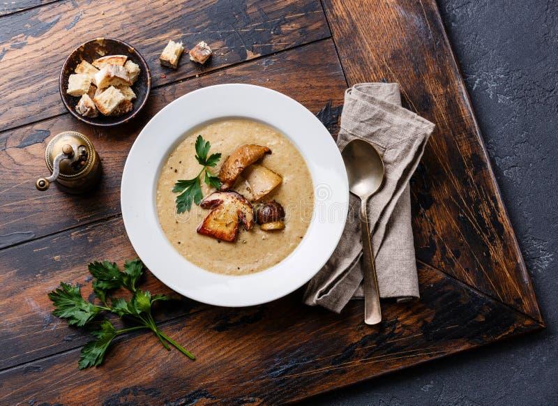 Crème-soupe avec le champignon de porcini image libre de droits