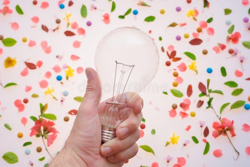 Créativité d'ampoule et nouveau concept d'idées photographie stock libre de droits