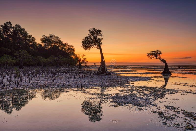 Crépuscule à la plage de Walakiri, île de Sumba, Indonésie photos stock