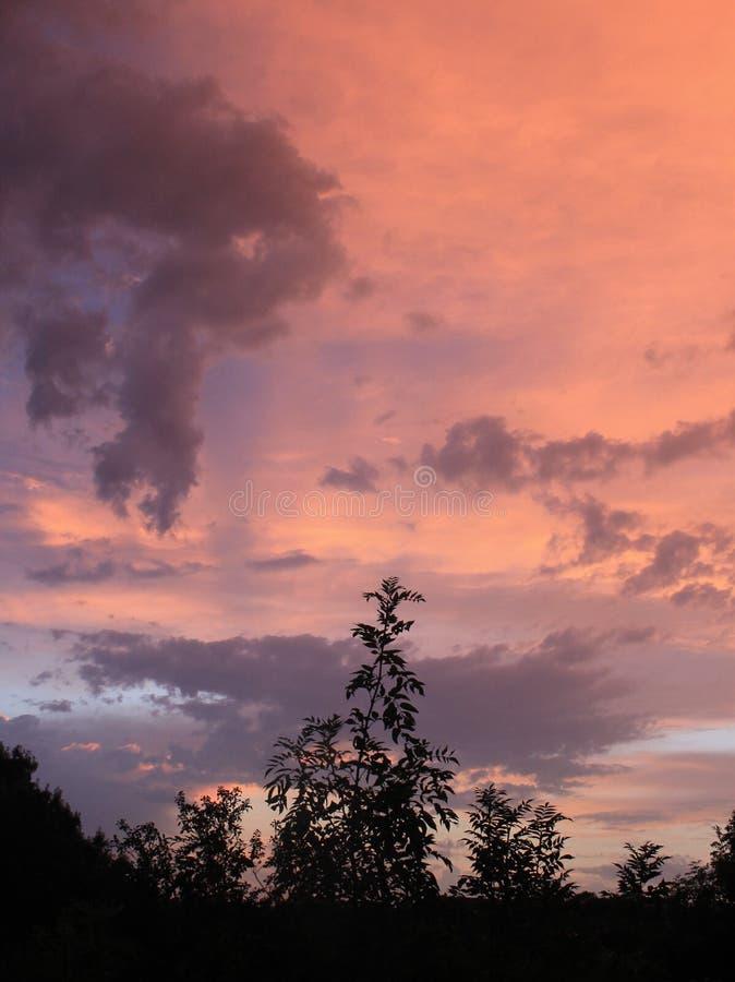 Crépuscule après pluie d'été image stock
