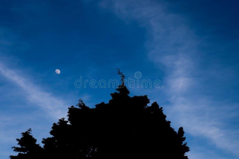 Crépuscule bleu impressionnant avec la lune images libres de droits