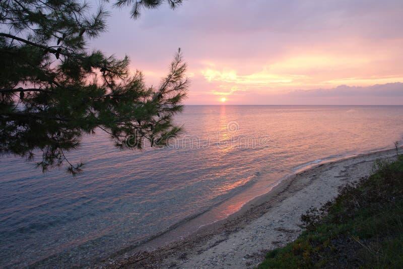 Crépuscule de bord de la mer image stock